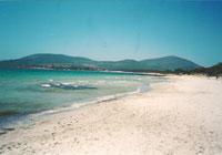 Sardegna: scoprendo l'isola di Alghero...
