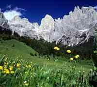 Vacanza in Fattoria in Trentino