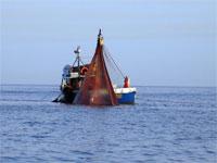 Pesca in Romagna: si è formato il Gruppo di Azione Costiera